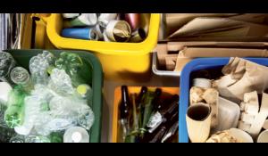 Verpackungen Tierwohl Nachhaltigkeit – Report »Nachhaltiger Konsum 2021«