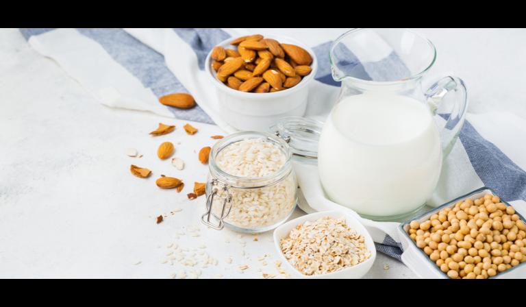 pflanzliche Milchprodukte – Meldungen – Bioboom 91